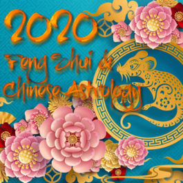 2020 Annual Feng Shui Chinese Astrology Consultation